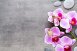 Quadro Beauty orchid on a gray background. Spa scene.