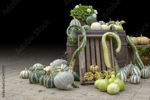 Leinwanddruck Bild lots of various pumpkins