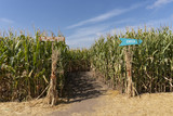 Corn Maze Entrance with Signs - 226606795