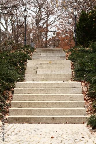 Treppe in Park