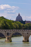 St. Peter's and the Tiber
