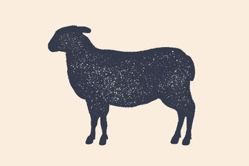 Lamb, sheep. Vintage logo, retro print, poster for Butchery meat shop, sheep silhouette. Logo template for meat business, meat shop. Isolated silhouette sheep, white background. Vector Illustration