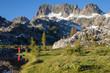 Ansel Adams Wilderness in the Eastern Sierras