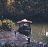 Captured in Hangzhou Xixi Wetland scenery - 226663534