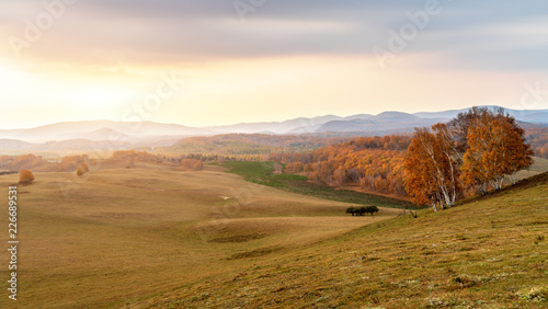 Autumn grasslands of Inner Mongolia - 226689531