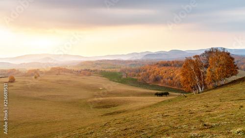Autumn grasslands of Inner Mongolia - 226689531