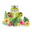 frog cute cartoon