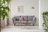 Real photo of a comfy sofa, copper coffee table and plants in a bright living room interior - 226722184