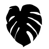 vector, on a white background silhouette palm leaf
