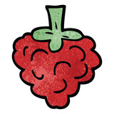 cartoon doodle raspberry