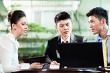 Chinese business people working in office using laptop - 226784994