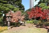 Tokyo Japanese garden