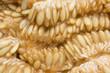 Closeup melon seeds texture. Macro cantaloupe seeds. - 226814342