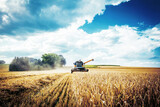 Combine harvesters Agricultural machinery. The machine for harvesting grain crops. - 226829744