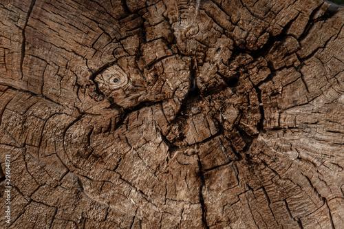 Holzstruktur - 226841711