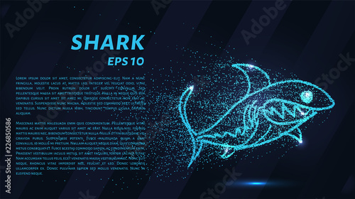 Fototapeta The shark from the particle. The shark consists of circles and points. Vector illustration