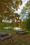 Autumn view in the park next to a lake. Wooden table set under a colourful tree. Beautiful silent view in the country side. - 226860717