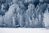 winter landscape with solitude house - 226878309