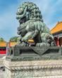 China-Dog-3955
