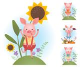 Funny piggy backgrounds set - vector color illustration - 226951197