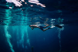Man free diver swimming in ocean, underwater photo with diver - 227001968