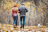 Woman and man in the fall strolling with their dog in the park - 227010991