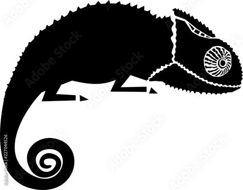 Fototapeta Chameleon illustration