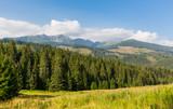 nice morning landscape in Tatras - 227053527