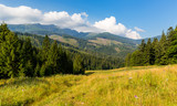 mountain landscape in Tatras - 227053555