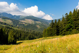 nice mountain valley in Low Tatras - 227053572