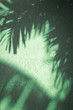 Tropical background of palm frond shadows on textured green wall
