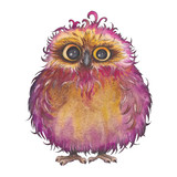 Cute little owl with curly feather. Watercolor illustration on white background. Isolated element for design. - 227123942