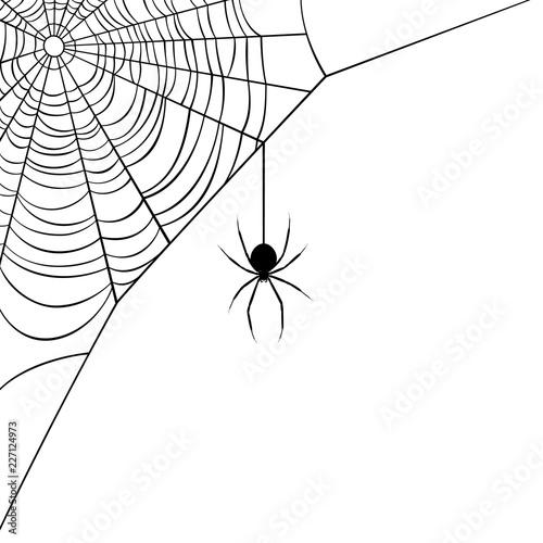 Vector illustration of a corner web/spider design.