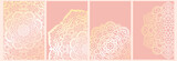 Set of mandala backgrounds isolated on pink. Banner, flyer, card with ornamental flowers. Vector illustration. - 227127902