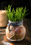 Vase with fresh sprigs of rosemary - 227270772