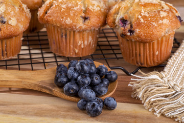 Spoonful of Blueberries and Blueberry Muffins