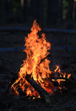 fire in darkness - 227290544