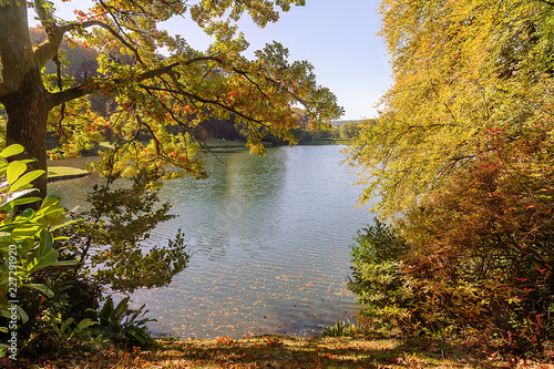 Foto Murales Autumn in the most popular park in the UK - Stourhead
