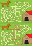 Dachshund maze