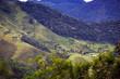 Quadro Brazilian tropical landscape
