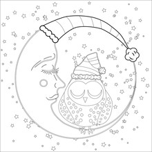 Coloring Book For Adult And Older Children Coloring Page  An Owl On The Moon Among The Stars Sticker