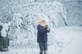 boy in a blue jacket and a white hat under the snow from a tree in the winter forest - 227327528
