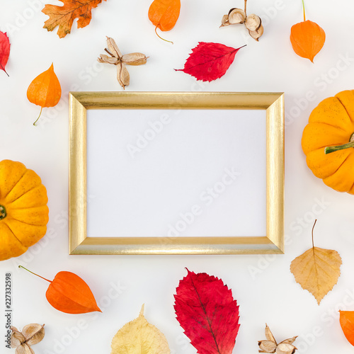 Frame made of pumpkins dried flowers and leaves