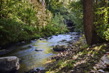 small river in the forest with stones and stream rapids, smooth water by long time exposure, nature background with copy space - 227339762