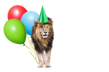 Lion Birthday Party With Copy Space