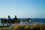 assis sur un banc face à la mer