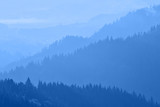 Mountains covered with woods in the early morning light - 227399105