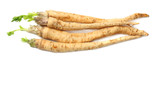 fresh parsley root isolated on white background - 227410905