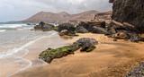 La Solapa, a Virgin Gold-Colored Sandy Beach in Fuerteventura, Canary Islands - 227478577