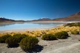 Laguna Ramaditas, altiplano, southern Bolivia South America - 227490502